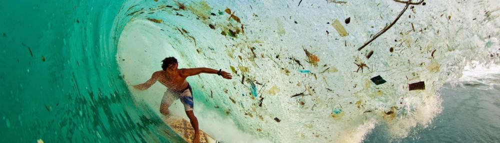 Frente de Acción Ecologista
